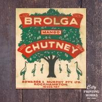 brolga-mango-chutney